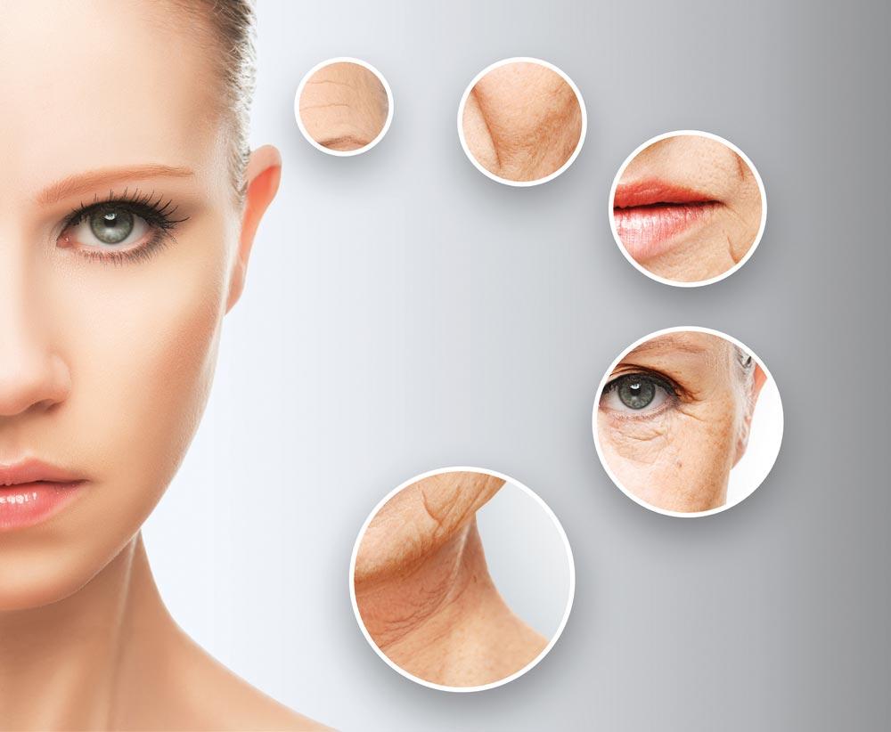 First Time Behandlung Kosmetik - Elke Lötsch